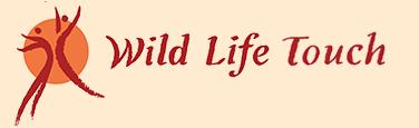 Wild Life Touch Tantramassage Berlin | Massage, Sinnliche Massage, Erotische Massage, Frau massiert Mann, Mann massiert Frau, Paarmassage, Ritual, Vierhändig, Liebe, Lust, Sexualität, sexuelle Massage